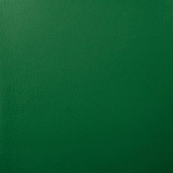Цвет: Кож/зам, зеленый, 36-001