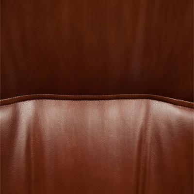 {id:4, name:Иск. кожа коричневая 2 TONE, data:[]}