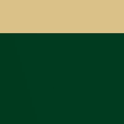 Темно-зеленый / Бежевая спинка